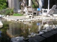 bassin 036.jpg